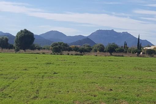 Perceel in Cales de Mallorca