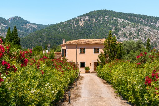 Authentic finca with mountain views and holiday rental license for 10 people in Alaró