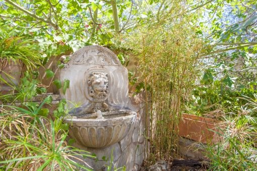 Wild-romantic and Mediterranean planting