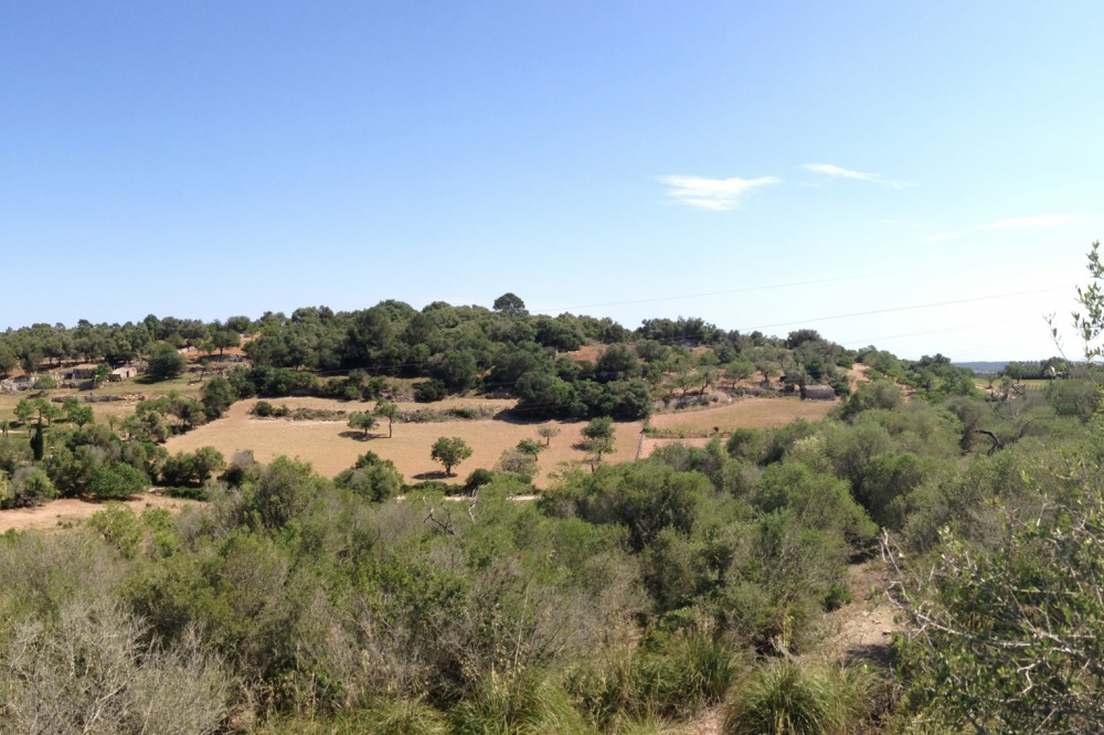 Beautiful plot of land near Porreres with panoramic views