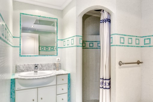 Nice bathroom with shower