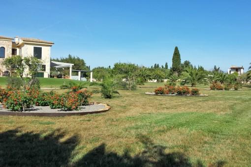 Well kept garden of the finca