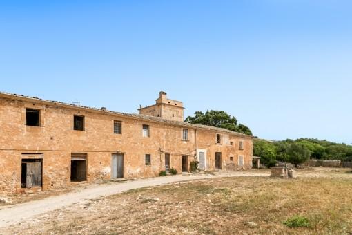 Perceel in San Lorenzo