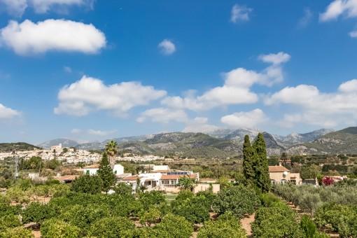 Mountain and panoramic views