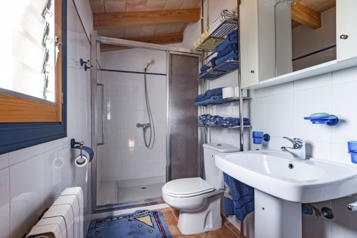 One out of 3 bathrooms with shower and natural light