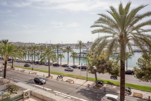Commerciëel in Paseo Maritimo