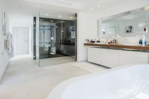 One out of 3 bathrooms with ground floor shower