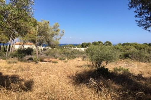 Perceel in Sol de Mallorca