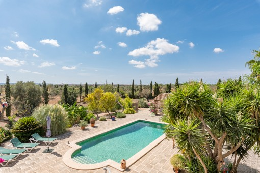 Views of the sunny pool area and surroundings