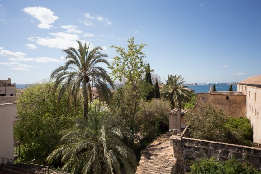 Huis in Palma de Mallorca Old Town