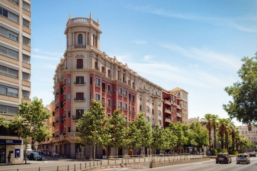 Commerciëel in Palma City