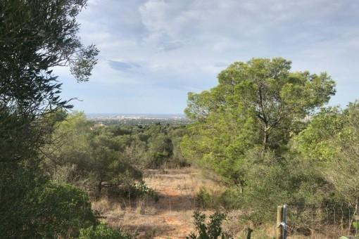 Perceel in Sa Cabaneta - Marratxi